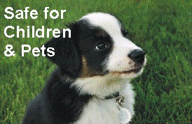 Fiesta Weed control is Safe for pets children